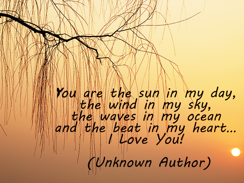 69 romantic beautiful i love you quotes and poems
